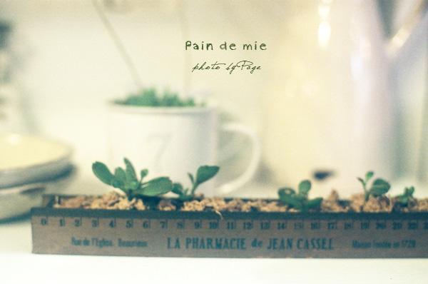 Pain de mie022
