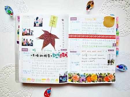 6月手帳分享34