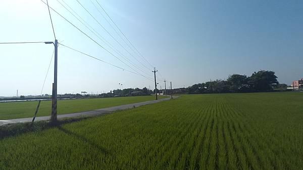 100_0861-1.JPG