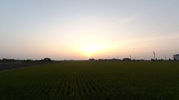 100_0967-1.JPG