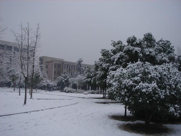 學校的小庭園