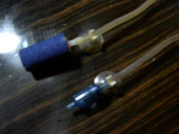 DSCN0907.JPG