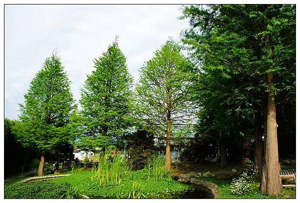 魔法農場-園區景色16.jpg