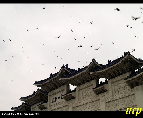 中正紀念堂11