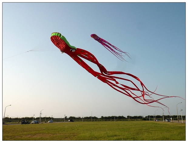 20110708moto-12.jpg