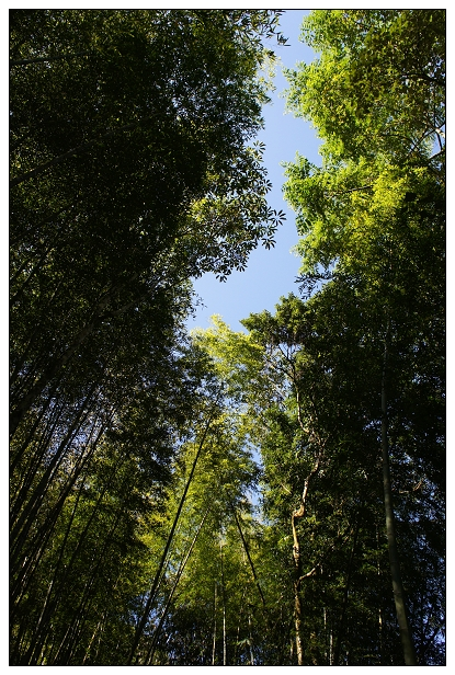 2012春節旅遊台南版-20.jpg