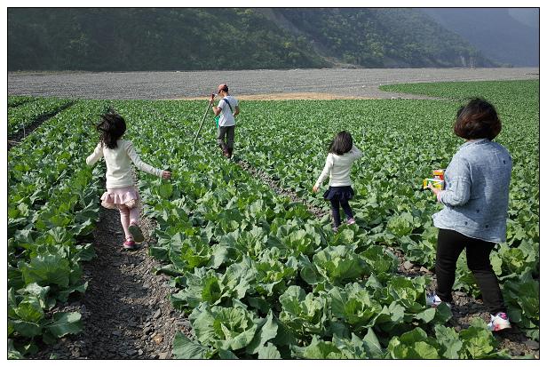 20150327福壽山露營趣-46.jpg