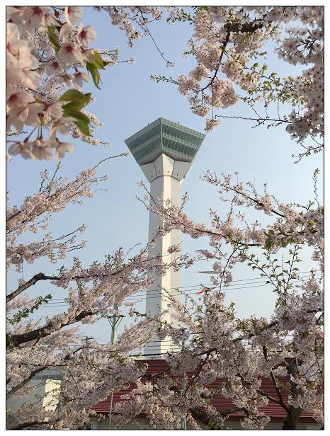 北海道之旅D2-16.jpg