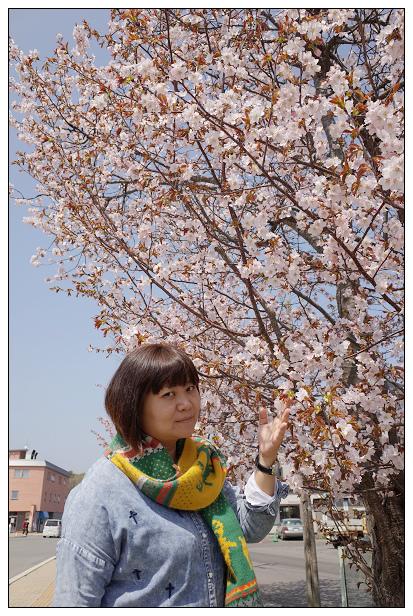 北海道之旅D3-22.jpg