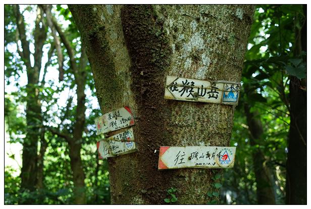 猴山岳健行-14.jpg
