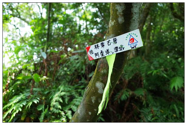 猴山岳健行-25.jpg