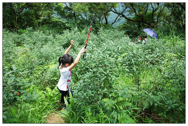 猴山岳健行-26.jpg