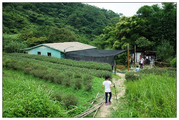 猴山岳健行-27.jpg