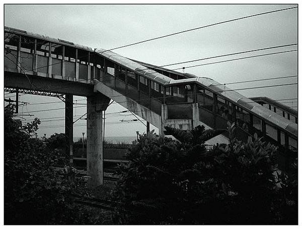 草嶺古道-24.jpg
