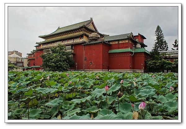 台北植物園-33.jpg