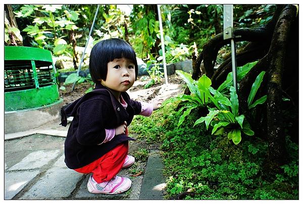 植物園-09.jpg