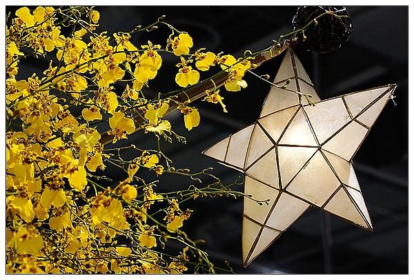 20101114花博-55.jpg