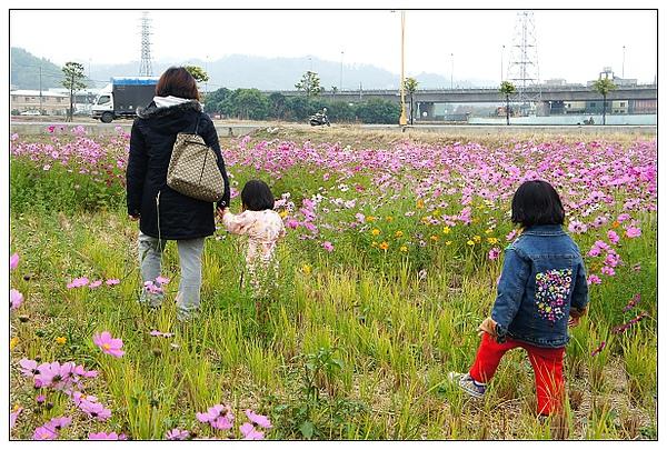 霧峰花湖-08.jpg