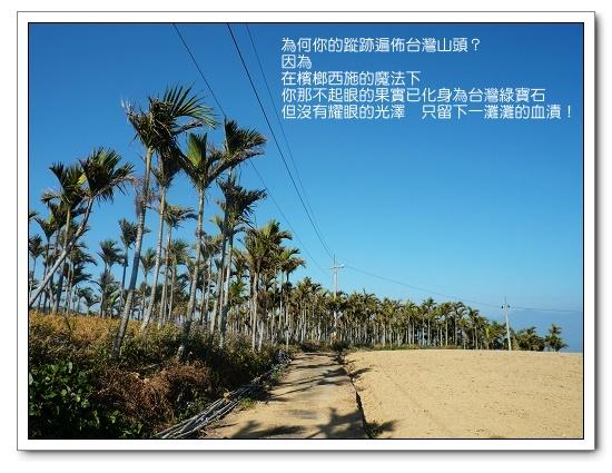 台灣綠金.jpg