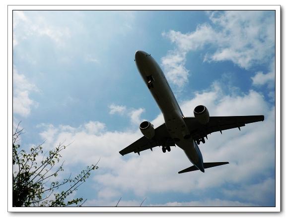 飛機01.jpg