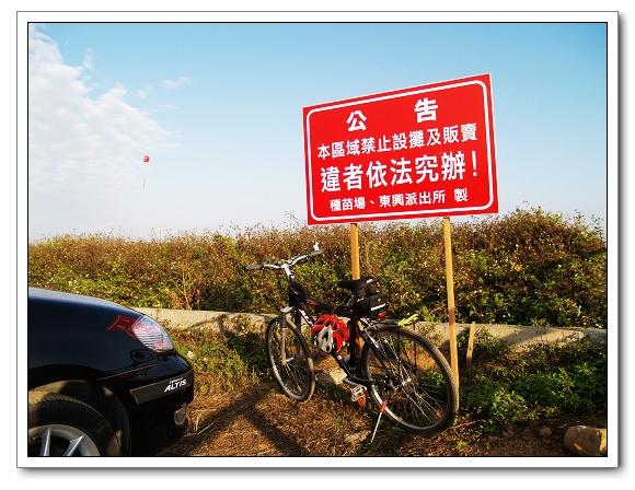 新社花海bike-01.jpg