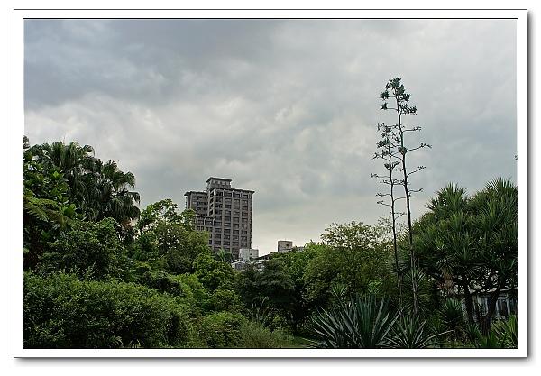 台北植物園-13.jpg