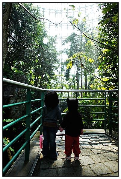 植物園-06.jpg