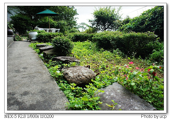 圓山草堂-16.jpg