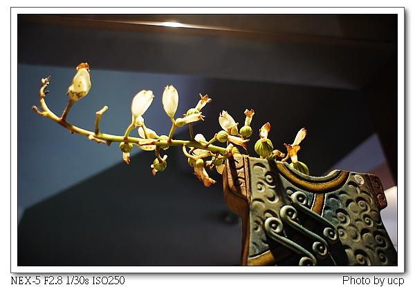 圓山草堂-22.jpg