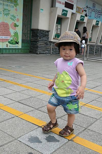 小羽球-0134小球逛動物園.jpg