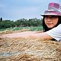 草堆少女2