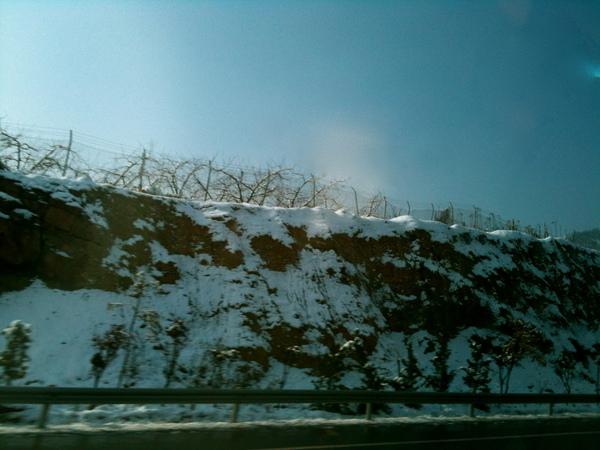 一路上回濟南的雪景