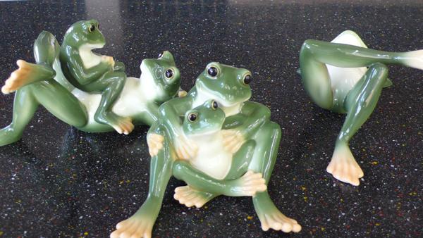 青蛙一家人