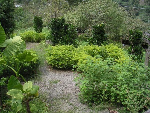 染織植物園區