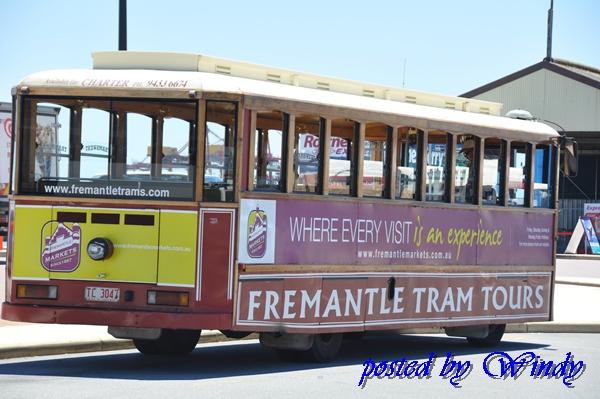 Fremantle路面電車