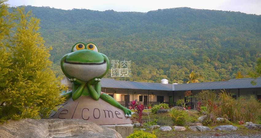 小雨蛙 有機 農場 民宿 蓮花茶 生態導覽 花蓮 壽豐鄉