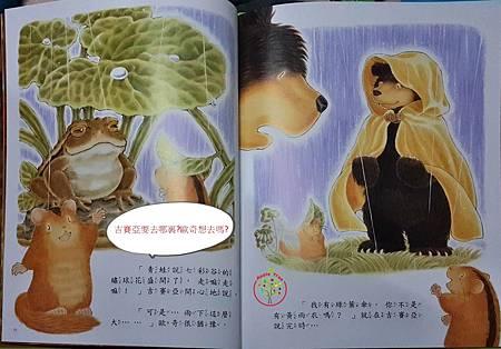 大熊小睡鼠3.jpg