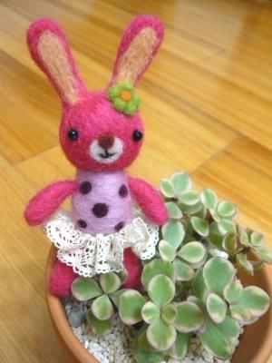 花叢中的桃紅兔