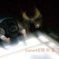 IMGP9655.jpg