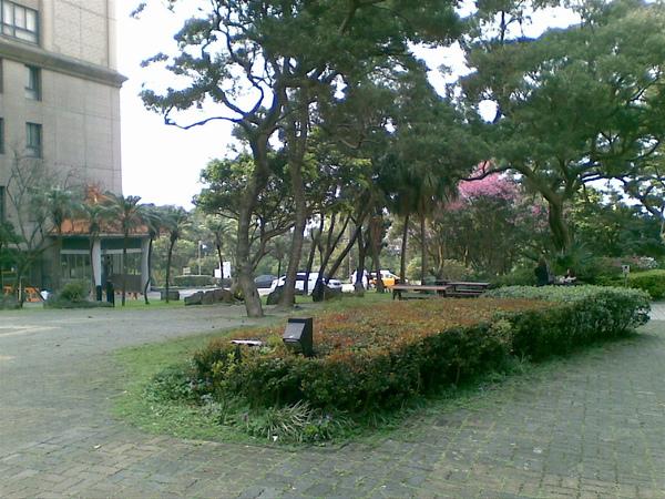 20100306(009).jpg