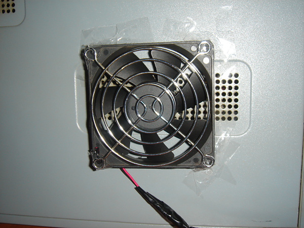 DSC08895.JPG