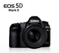 5D mark