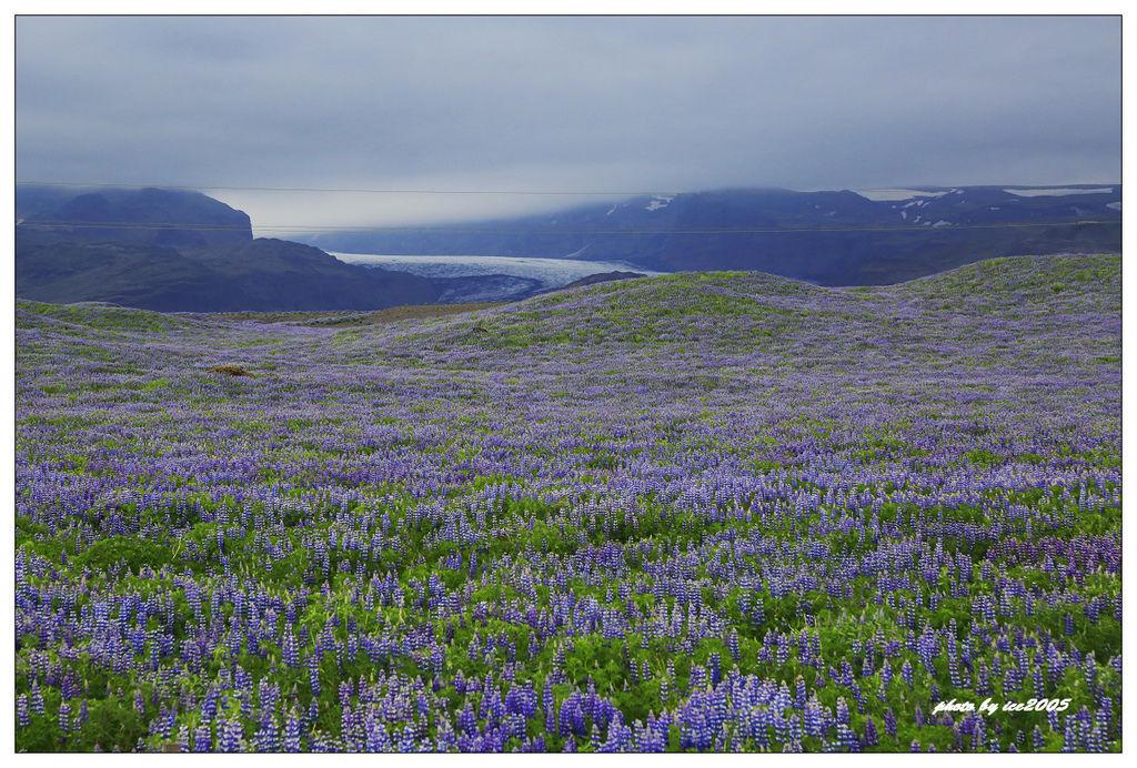 2016 UK&Iceland B_0615_0499.jpg