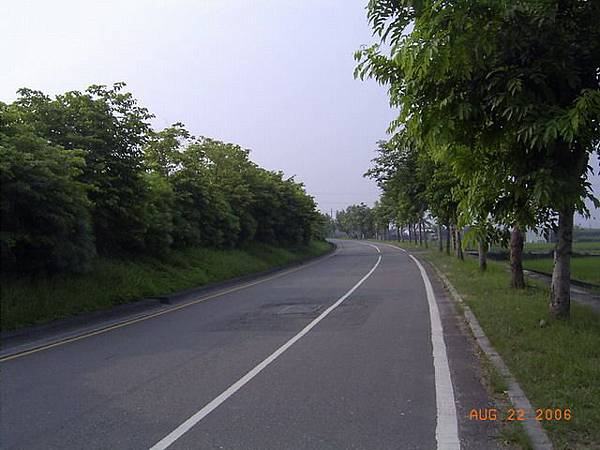 台63慢車道