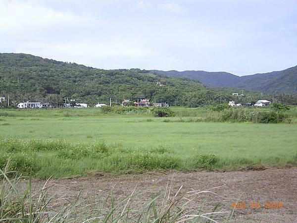 漂亮的牧草原