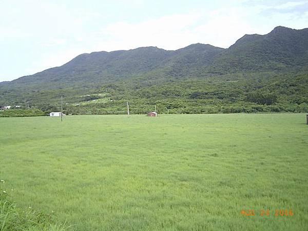 牧草原和後面的樹,以及後面的山,形成不同層次的綠