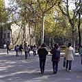 南京大學校園