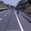 高速公路上的路人