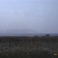 太湖大到中間有座山