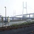 往浦東機場的路上,南浦大橋